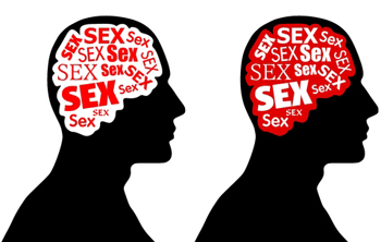 Heidevolk heterosexual definition